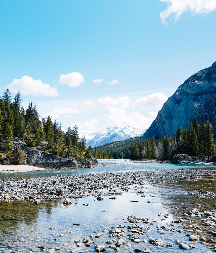 **Bow River**