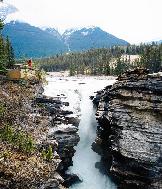 **Athabasca Falls in Jasper National Park**