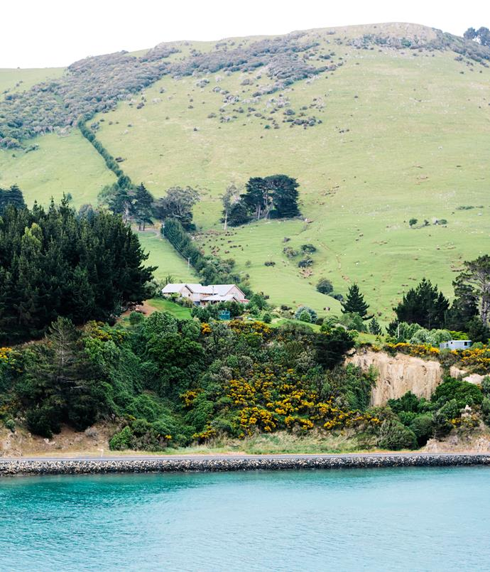 **Leaving Dunedin via Otago Harbour**