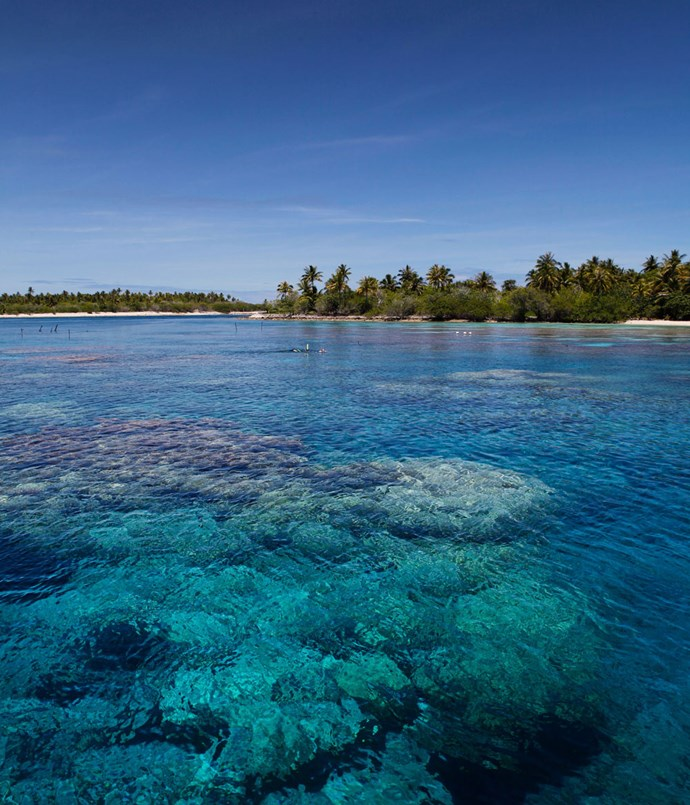 **A shallow reef in Ahe atoll, in the Tuamotu Archipelago**