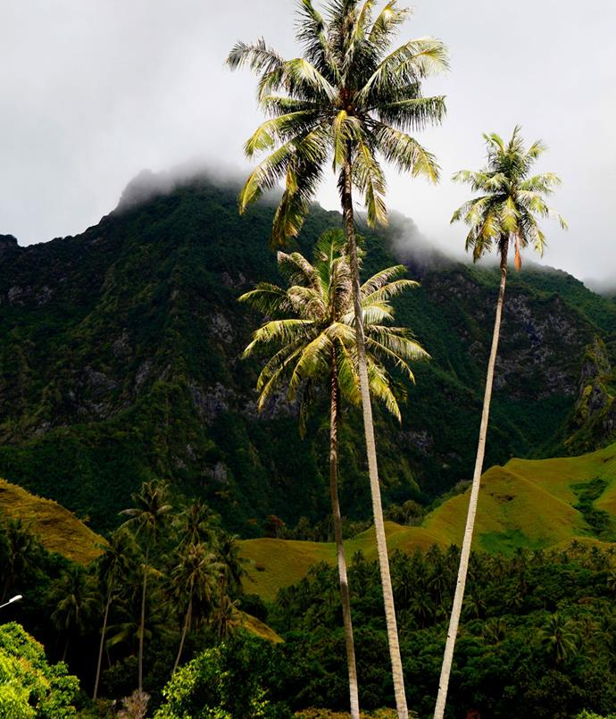 **The volcanic landscape on Fatu Hiva, in the Marquesas**