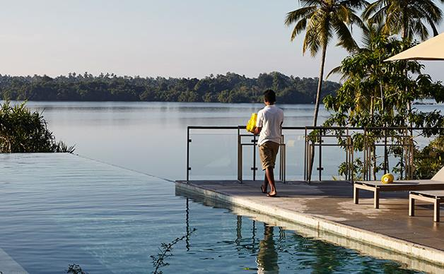 Tea and serendipity in Sri Lanka