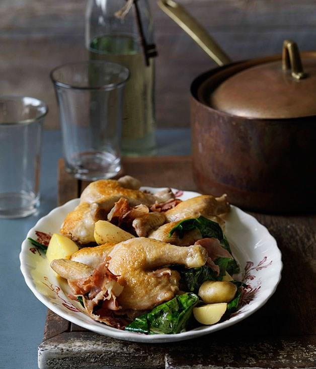 """[**Braised spatchcock with prosciutto, potato and chicory**](https://www.gourmettraveller.com.au/recipes/browse-all/braised-spatchcock-with-prosciutto-potato-and-chicory-10531