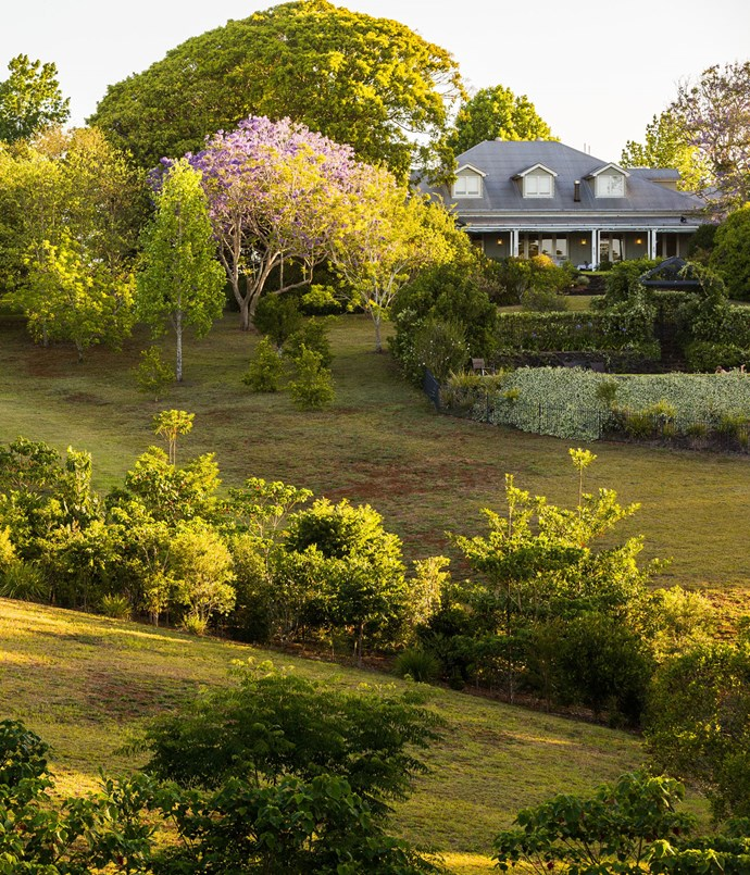"**Spicers Clovelly Estate, QLD** Surrounded by the rolling green hills and remnant rainforest, this French Provincial-inspired property is perfect for those craving a country getaway without forgoing the five-star comforts of heated bathroom floors and Bemboka blankets. Some of the suits feature big spa baths in which you can sprinkle ""bath caviar"" and soak until your fingers crinkle, or head to the main building and perch yourself in front of the freestanding fireplace.  _Spicers Clovelly Estate, 68 Balmoral Rd, Montville, QLD, [spicersretreats.com](http://www.spicersretreats.com ""Spicers Retreats"")_"