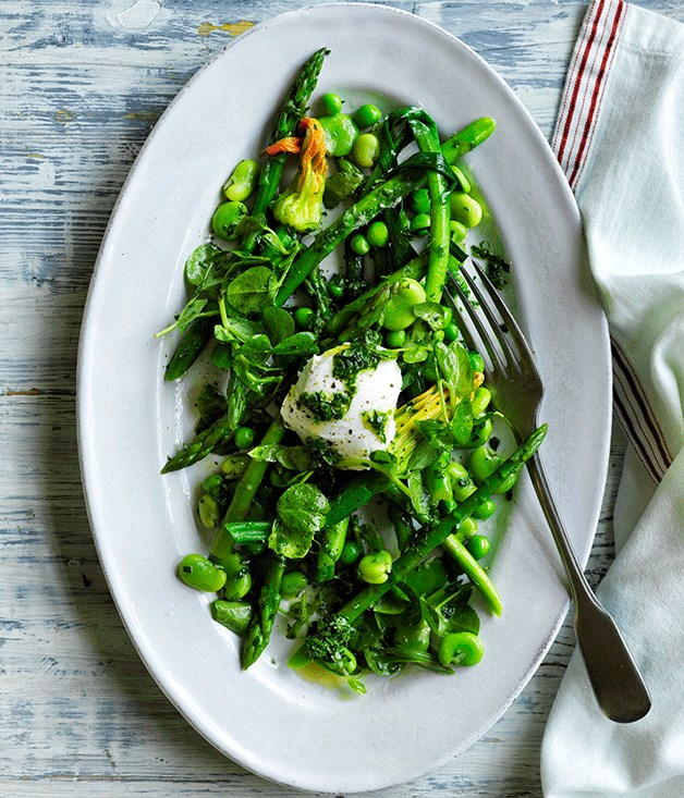 Salade printemps with goat's curd and herb vinaigrette