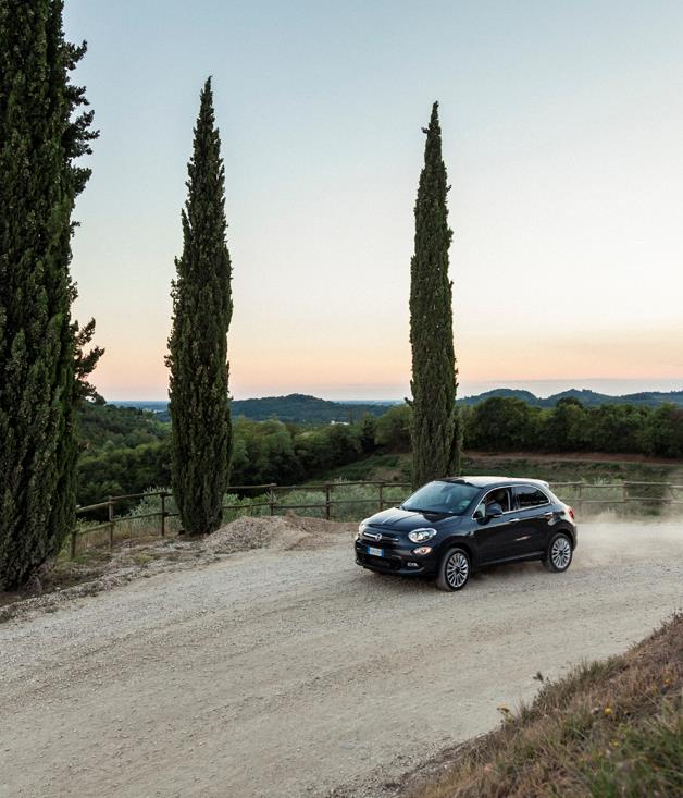 **Fiat driving through Livio Felluga's vineyards** The gentle hills of Eastern Friuli are home to superb wine country, thanks to being positioned between the Adriatic and the Alps, and their unique soil composition. It is in this region that Livio Felluga established his 155-hectare estate, and is known for being one of the first to revive Friuli as a winemaking destination.  [liviofelluga.it](http://www.liviofelluga.it/)