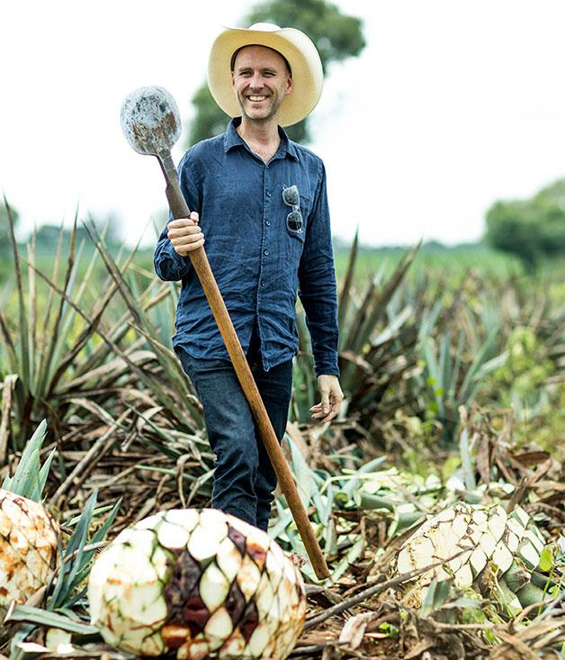 **Gourmet Traveller's Pat Nourse in the Patrón agave fields**