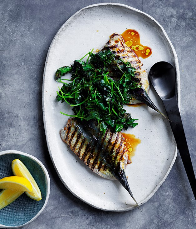Josh Lewis' blue mackerel and charred parsley