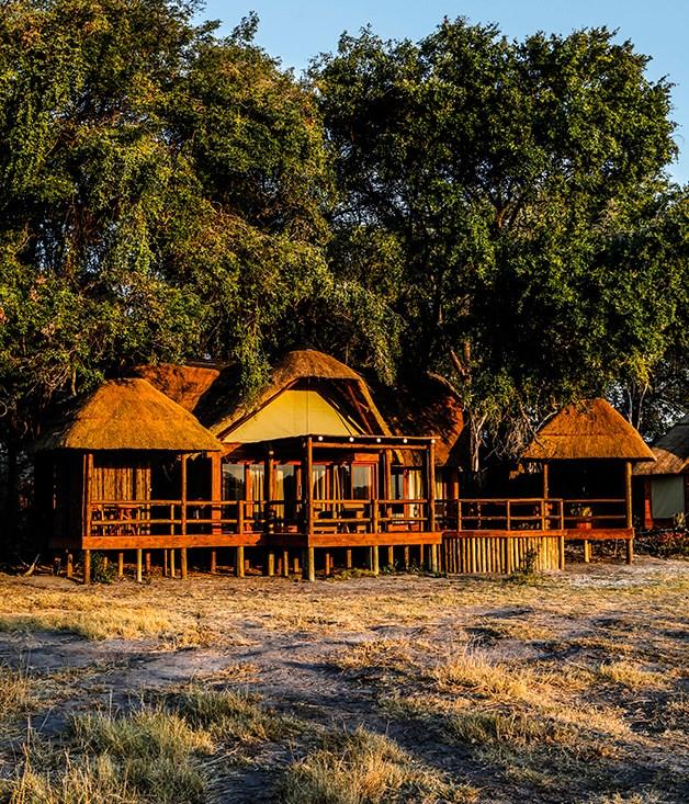 A luxury safari though Botswana's Okavango Delta