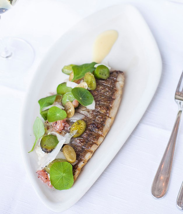 **Coal-roasted fish with salted lemon and cucumbers** Wren says the Grey Goose Martini is a perfect match for protein, whether it's Paper Daisy's coal-roasted fish or caramelised pork neck with Davidson's plum glaze.