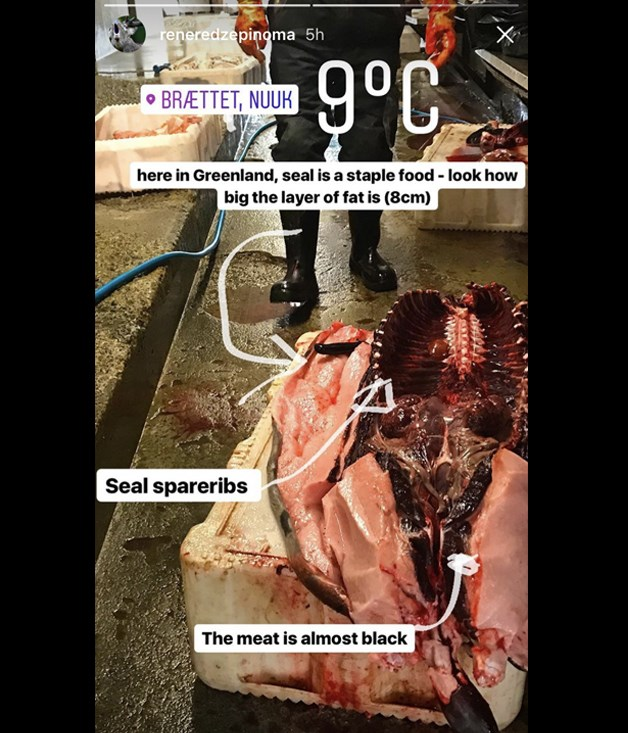 **Seal** While little detail is given as to the meat's actual taste, Redzepi's diagram helpfully labels its thick layer of fat, almost black meat and spareribs. Barbecued seal ribs, anyone?