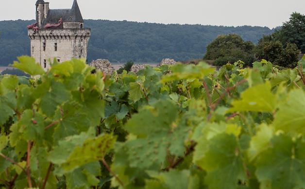 France leads on food sustainability, Australia lags