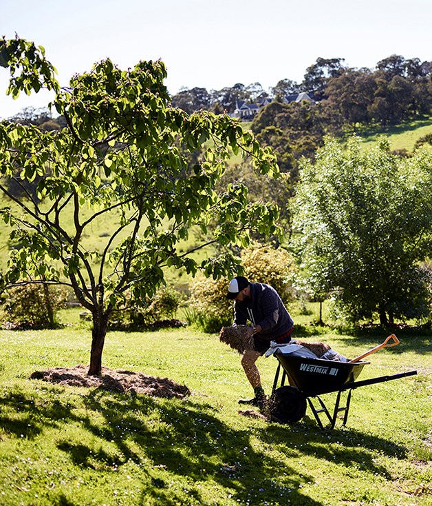 "**Fabian Capomolla** _[The Farm Yarra Valley](https://thefarmyarravalley.com.au/), Vic_  ""Gardening is never the same and every day is different. My garden reminds me to take each day as it comes. Enjoy it for what it looks like today - it will never look like that again. My main advice would be to grow what you love, for who you love. And don't talk at your plants; let them talk to you.""  _Fabian Capomolla's book_ Growing Food the Italian Way _(Plum, $44.99) is out now._"