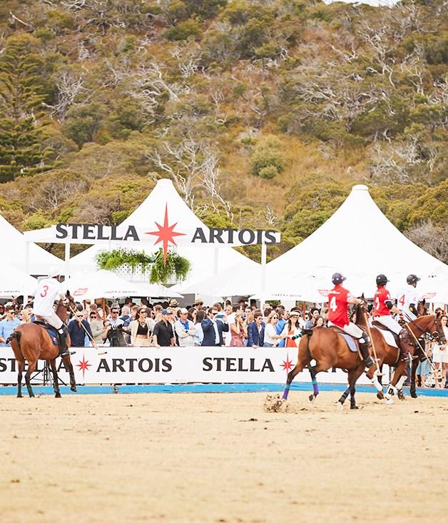 **Stella Artois marquee at the polo**