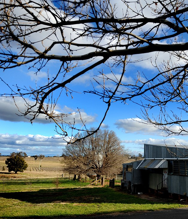 24 hours in Murrumbateman
