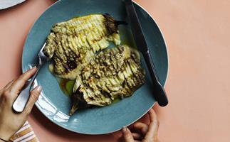 Eggplant lines