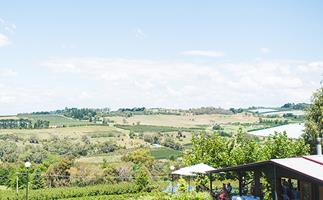 A panorama shot showing a light blue sky with clouds and rolling green hills, and in the foreground, in the bottom right, the covered outdoor seating section of a restaurant.