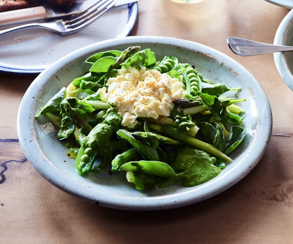 """[**Spring salad with fresh curd**](https://www.gourmettraveller.com.au/recipes/chefs-recipes/spring-salad-fresh-curd-16738
