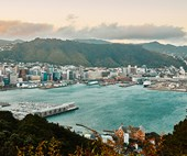 The best places to eat and shop in Wellington, New Zealand