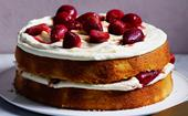 26 sponge cakes of the light and fluffy kind