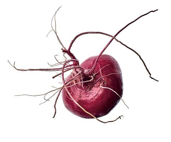 A Hida Beni red turnip