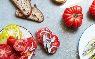 12 tomato recipes to celebrate the coming tomato season