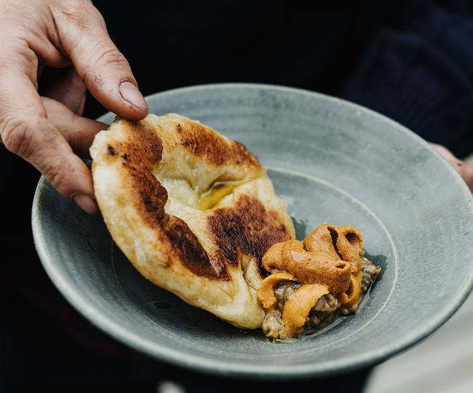 Flatbread with miso eggplant and urchin