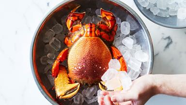 Josh Niland's guide to cooking spanner crab