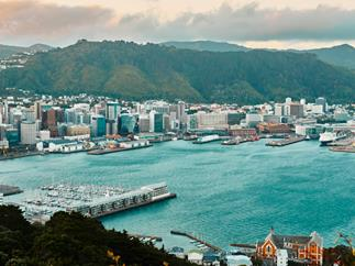 View of Wellington from Mount Victoria Lookout.
