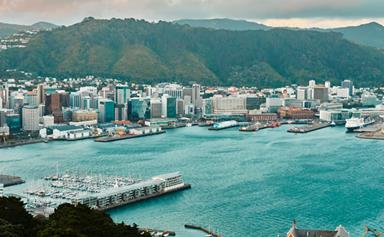 City hitlist: Wellington