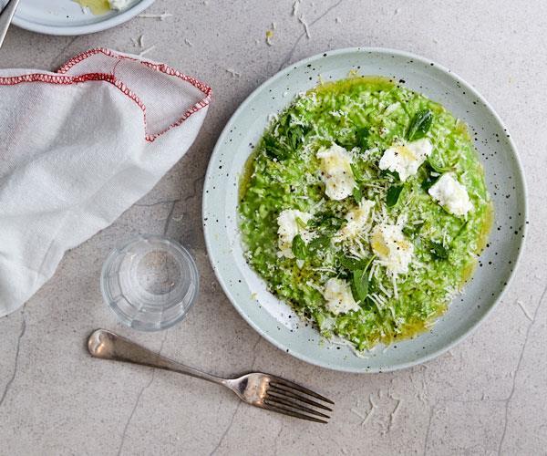 Pea risotto with buffalo mozzarella and spring herbs