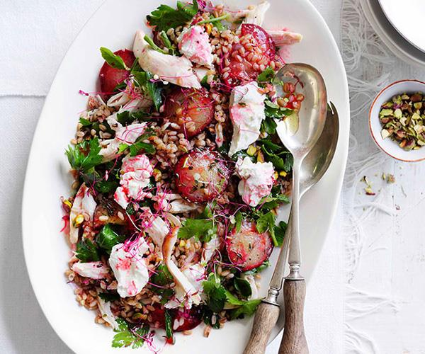 Chicken, roast plum, labne and grain salad