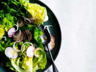 Radish and butter lettuce salad