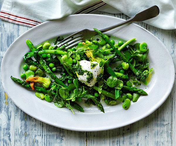 "**[Salade printemps with goat's curd and herb vinaigrette](https://www.gourmettraveller.com.au/recipes/browse-all/salade-printemps-with-goats-curd-and-herb-vinaigrette-12618|target=""_blank"")**"