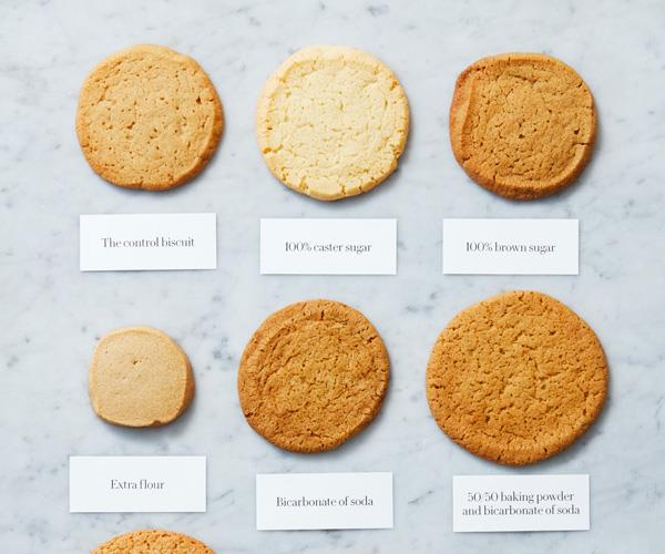 The biscuit line-up