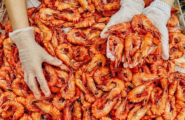 Prawns at Sydney Seafood Market