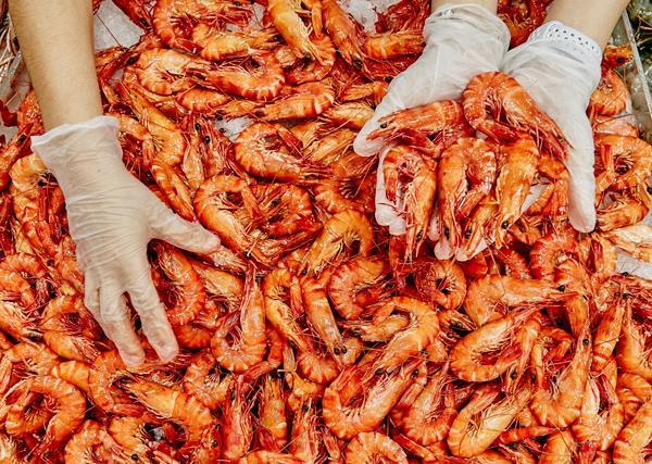 Prawns at Sydney Seafood Market
