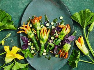 Stuffed zucchini flowers with basil sauce