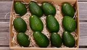 The subscription service that delivers boxes of avocados to your doorstep, every month