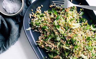 Farro and fennel salad