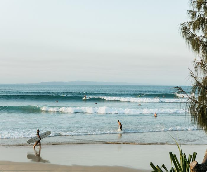 A food lover's guide to the Sunshine Coast