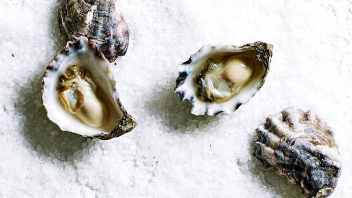 Your guide to oysters (and why you should serve them up this summer)