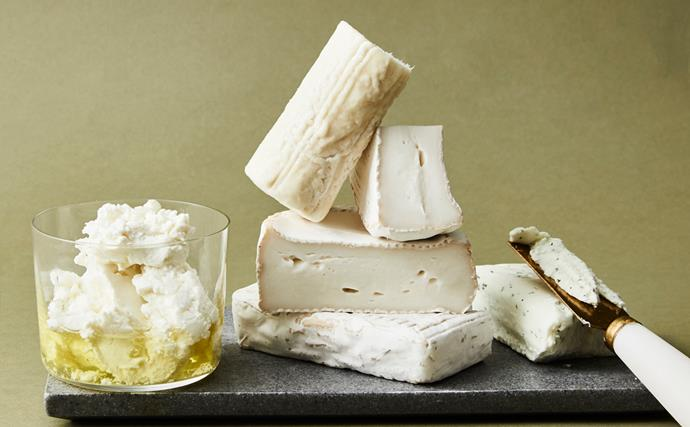Our favourite goat's cheeses on the market
