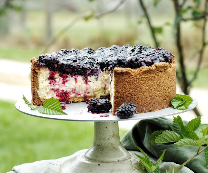 "**[Sean Moran's goat's curd, pistachio and blackberry cheesecake](https://www.gourmettraveller.com.au/recipes/chefs-recipes/blackberry-cheesecake-19103|target=""_blank"")**"