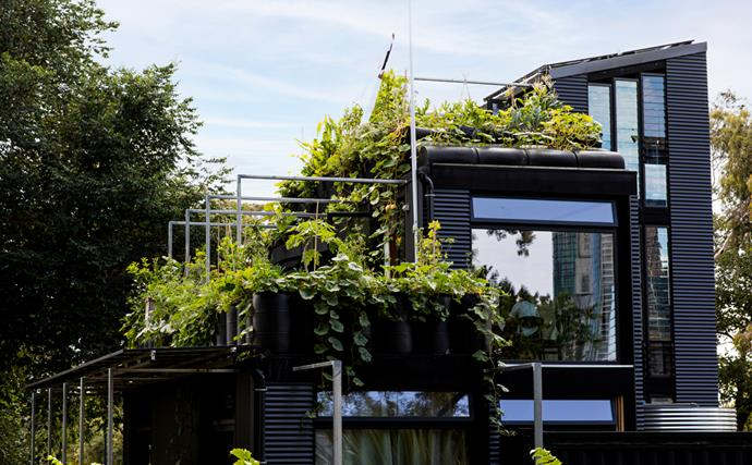 This ambitious zero-waste home and urban farm can be found right in Melbourne's CBD