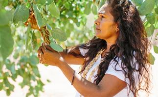Side profile of a woman in white T-shirt harvesting Kakadu plum from a tree.