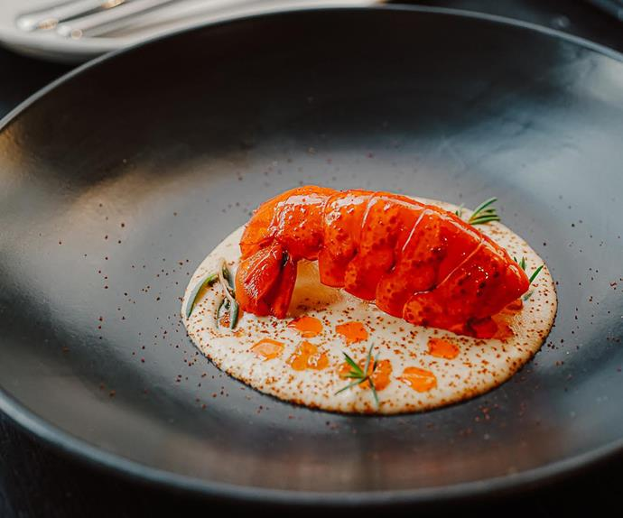 Review: Canberra's Corella is all polish, minus the pretence