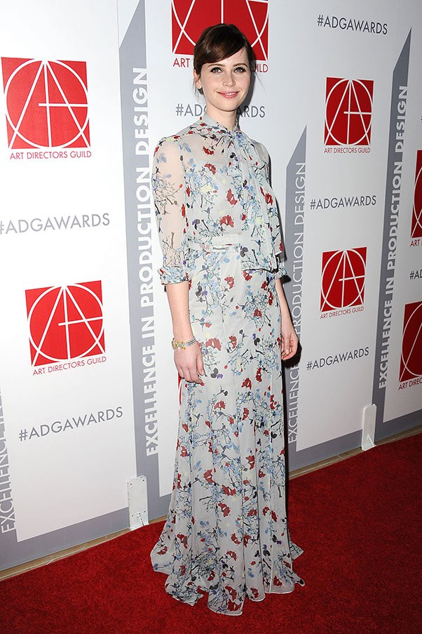 <strong>ERDEM</strong><BR><BR> Felicity Jones at the American Directors Guild Awards
