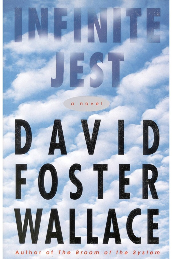 <strong>Infinite Jest by David Foster Wallace</strong><br><br> A tennis academy and a rehab are the settings of this complex novel, which explores everything from addiction to suicide to the relationship between America and Canada.