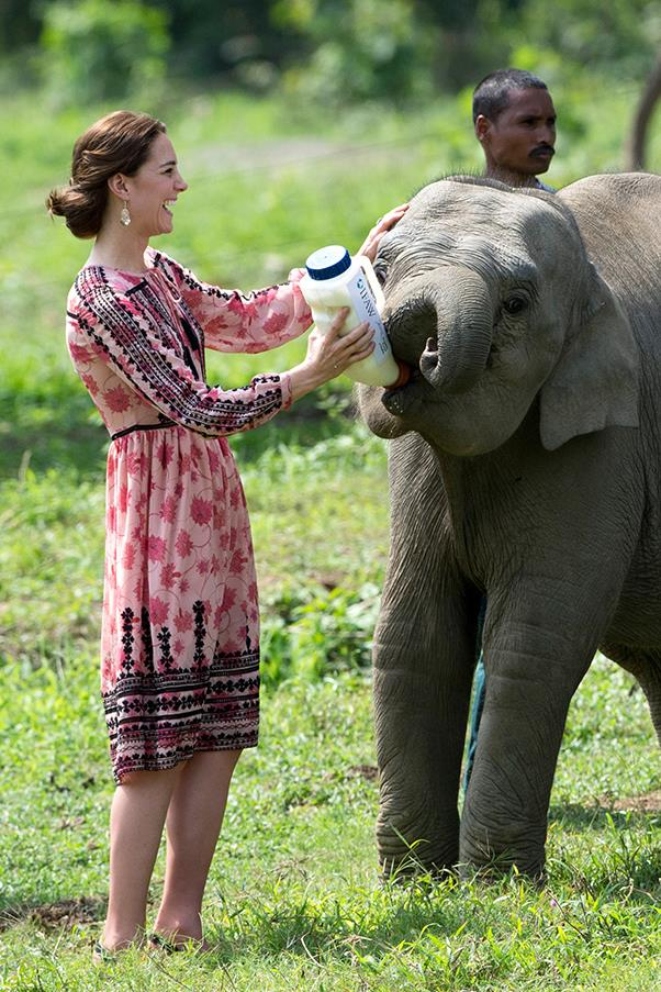 Kate got patriotic in Kaziranga National Park, donning a Topshop, boho-inspired black and pink coloured dress.